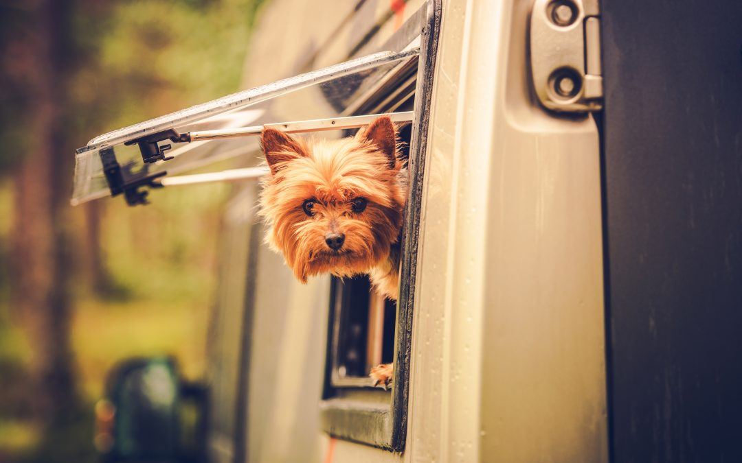 A Complete Guide to Safety: How to Operate Your RV Emergency Exit Window